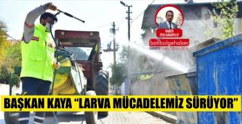 Başkan Kaya 'Larva mücadelemiz sürüyor'